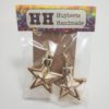 Gold Shiny Star Shaped Ornament Earrings